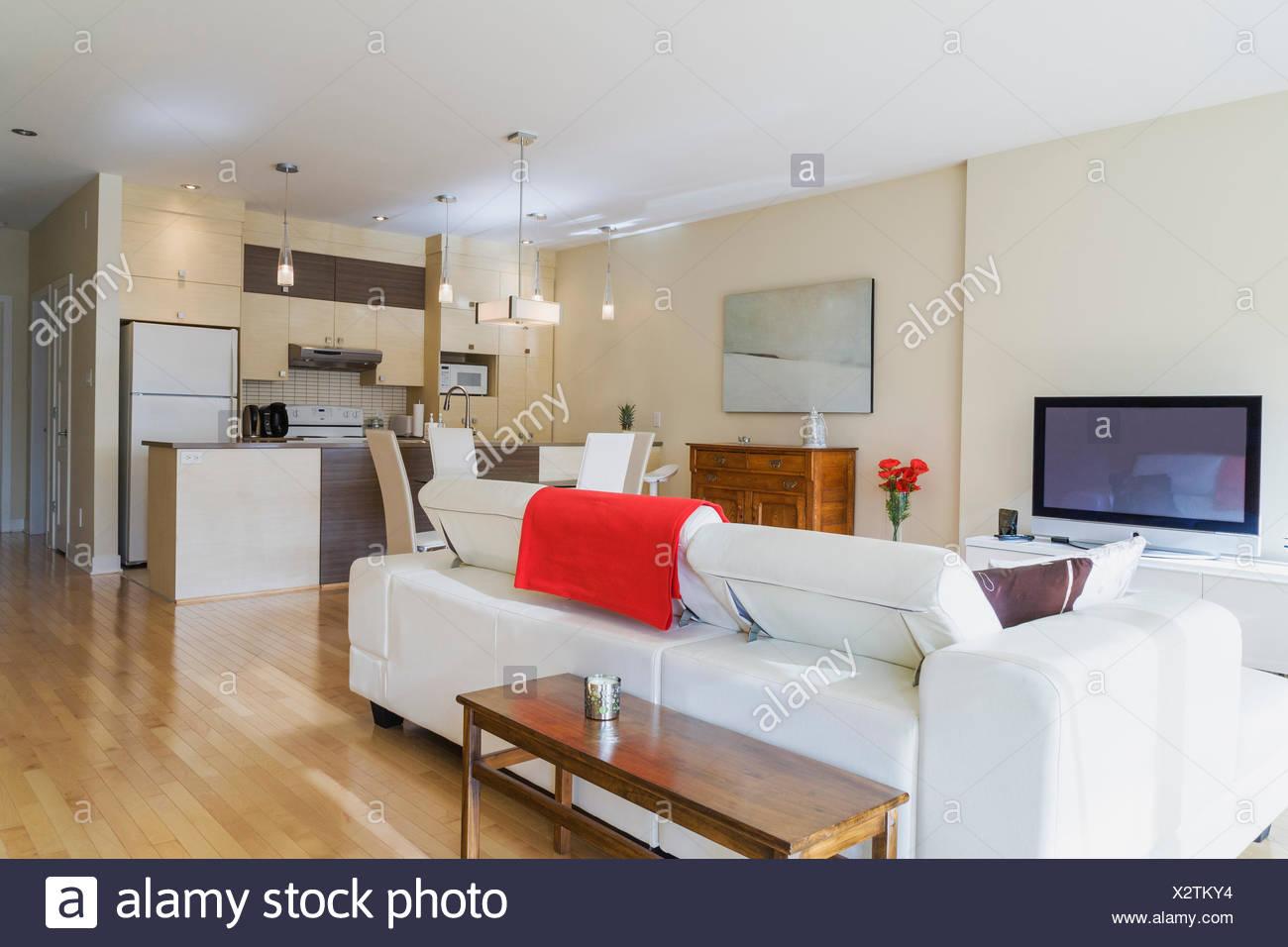 In pelle bianca divano in soggiorno e cucina in ristrutturato ...