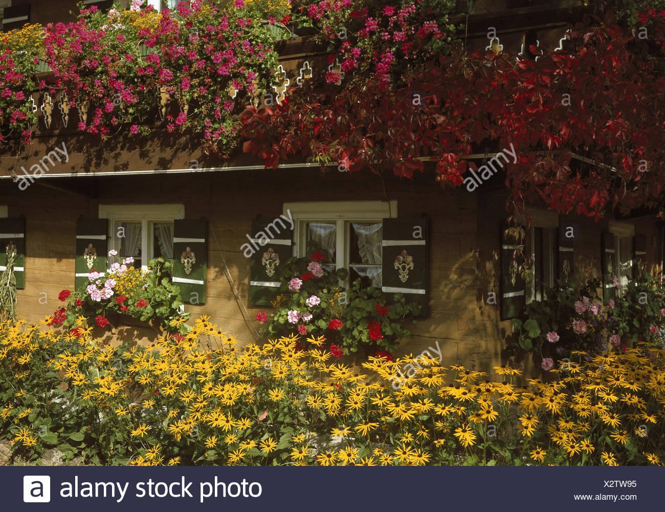 Decorazioni In Legno Per La Casa : Agriturismo facciata dettaglio decorazione floreale casa in