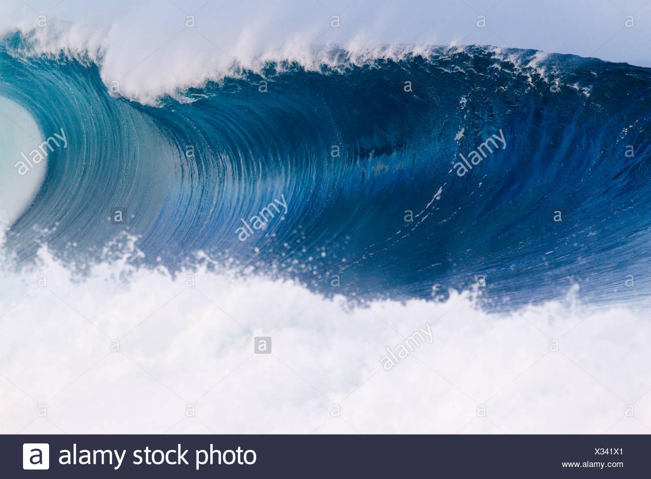 Un'onda rompe in fuori dalla parete nelle Hawaii. Immagini Stock