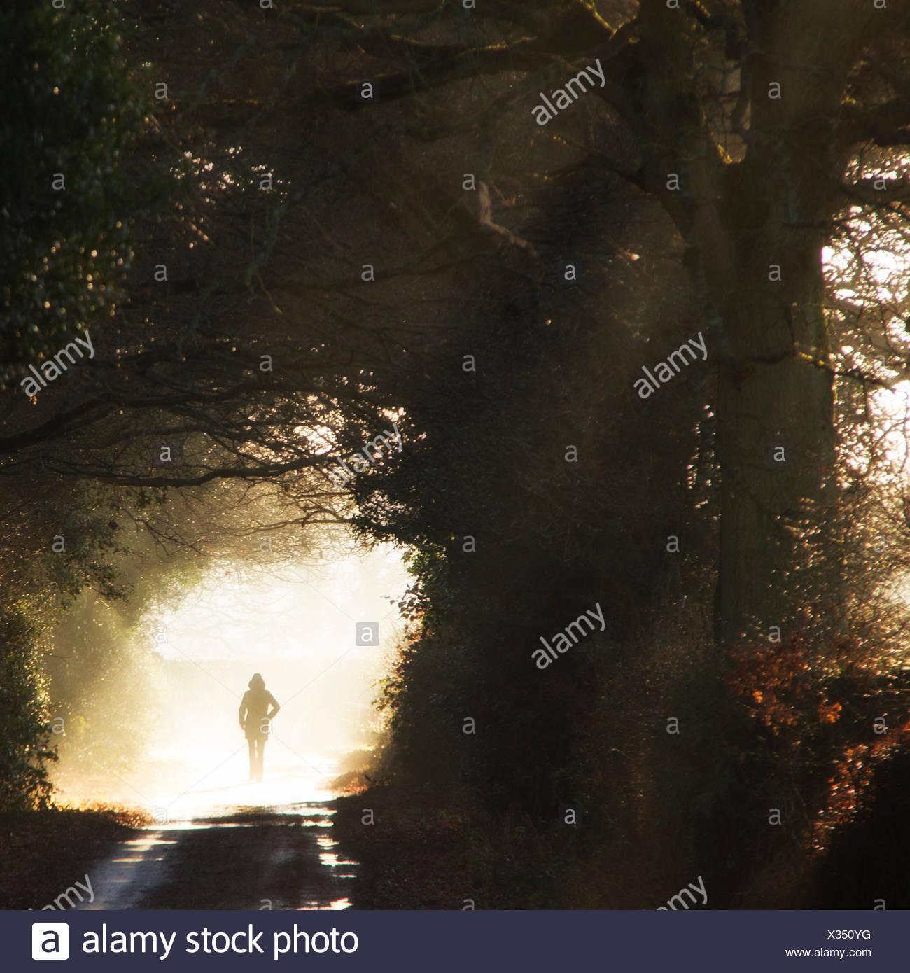 Vista posteriore della persona che cammina di Sun Immagini Stock