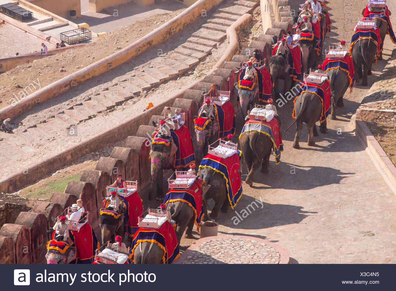 I turisti, ride, fort, ambra, elefante, Asia, India, elefante, Rajasthan, ambra, Jaipur, Immagini Stock