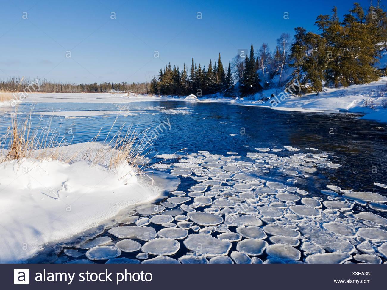 Pan ghiaccio lungo il fiume Whiteshell, Whiteshell Provincial Park, Manitoba, Canada Immagini Stock