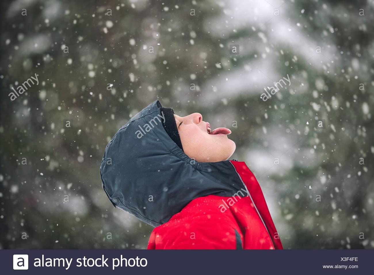 Vista laterale del Ragazzo spuntavano lingua cattura i fiocchi di neve Immagini Stock