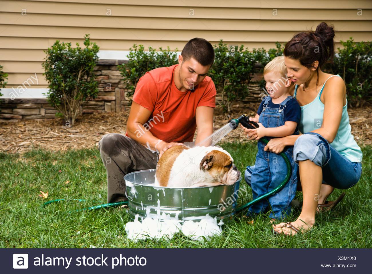 Una Vasca Da Bagno In Inglese : Caucasian famiglia con bambino figlio dando bulldog inglese una