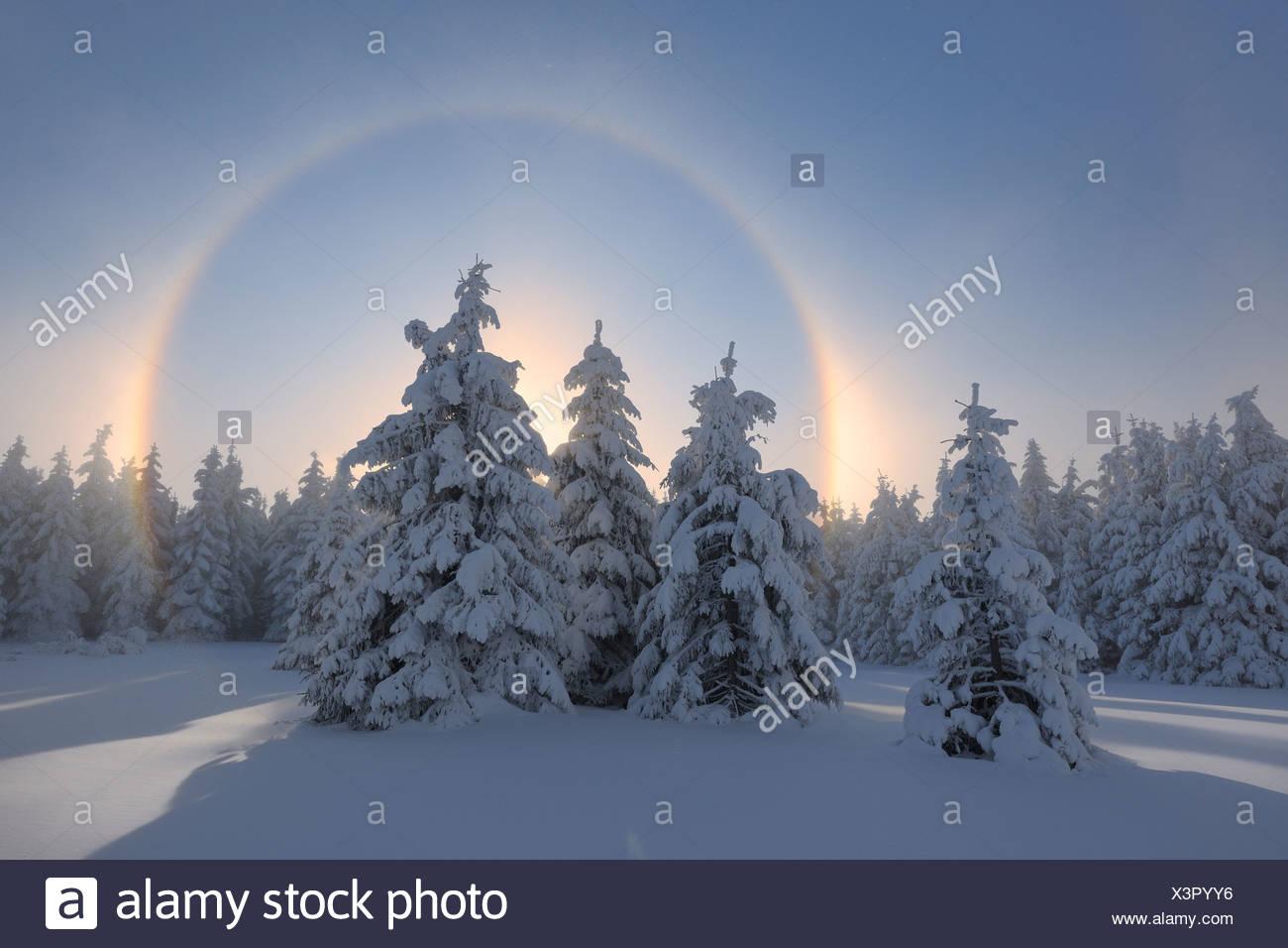 Vista di sundog con paesaggio innevato Foto Stock