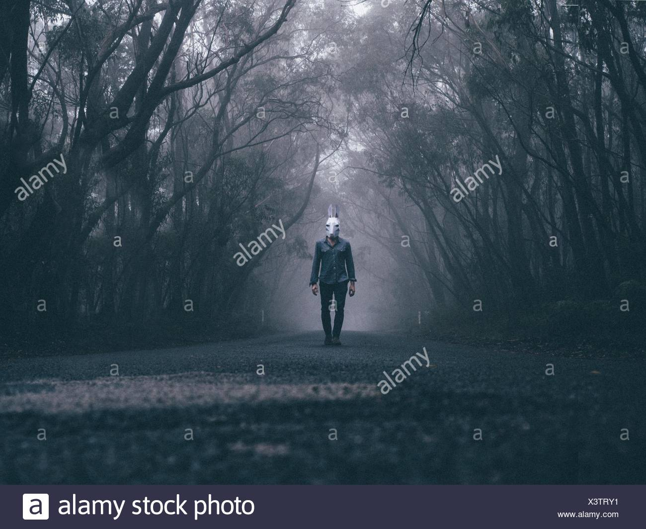 Uomo che indossa la maschera di coniglio su strada forestale Immagini Stock