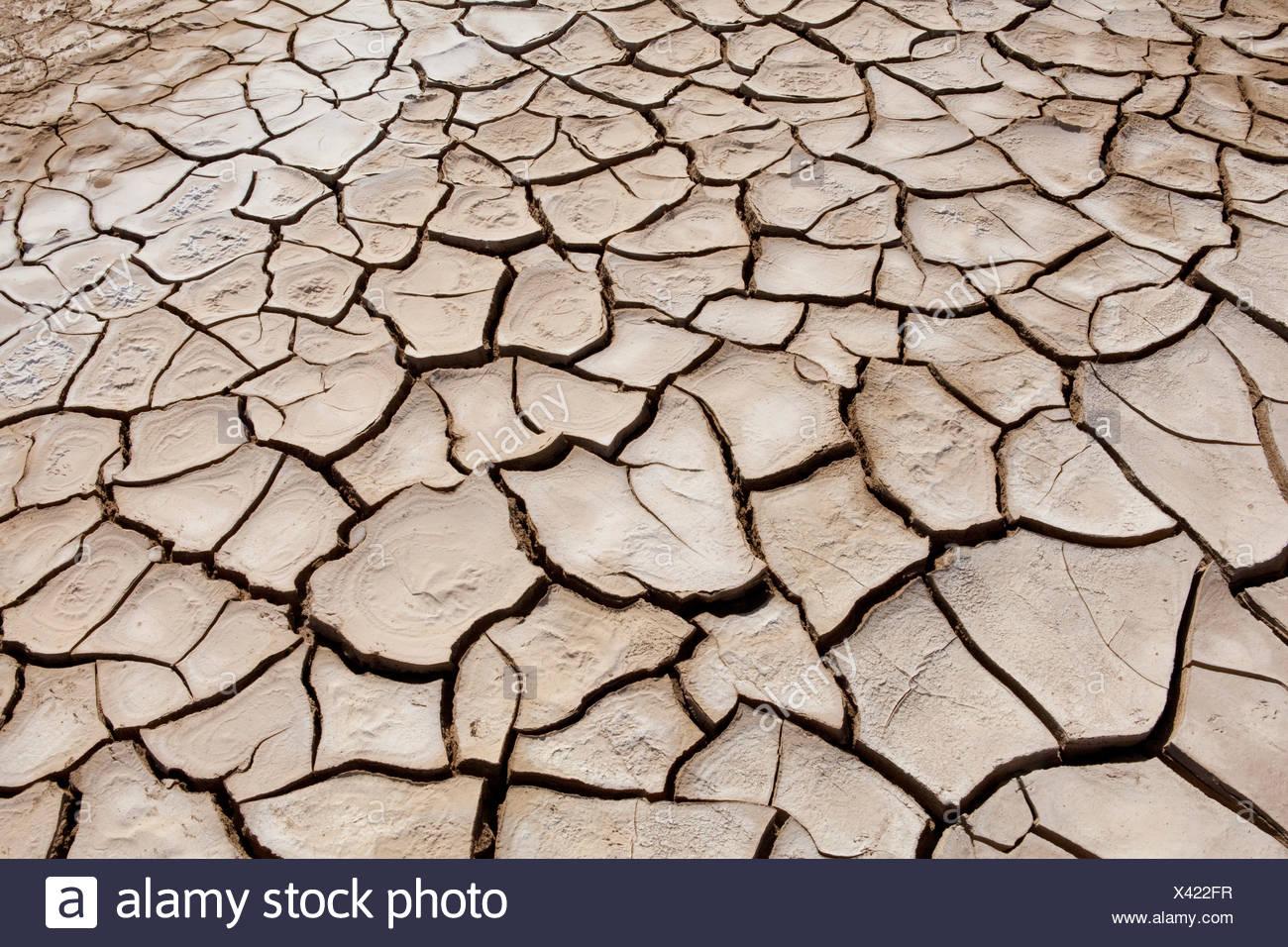 Danakil, Africa, Etiopia, drily, lacrime, terra, deserto Immagini Stock