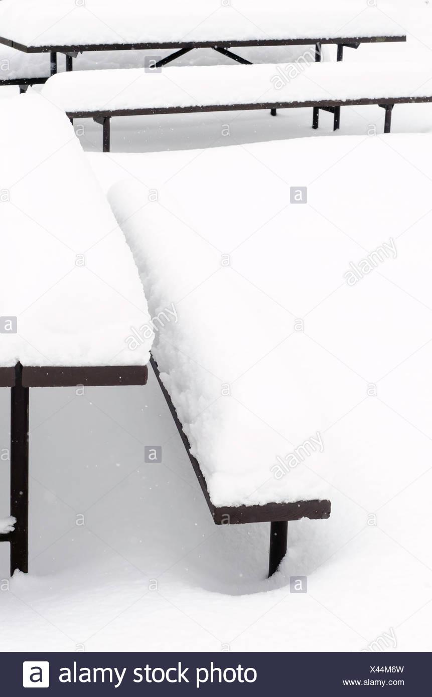 Snow-sormontato da banco Immagini Stock