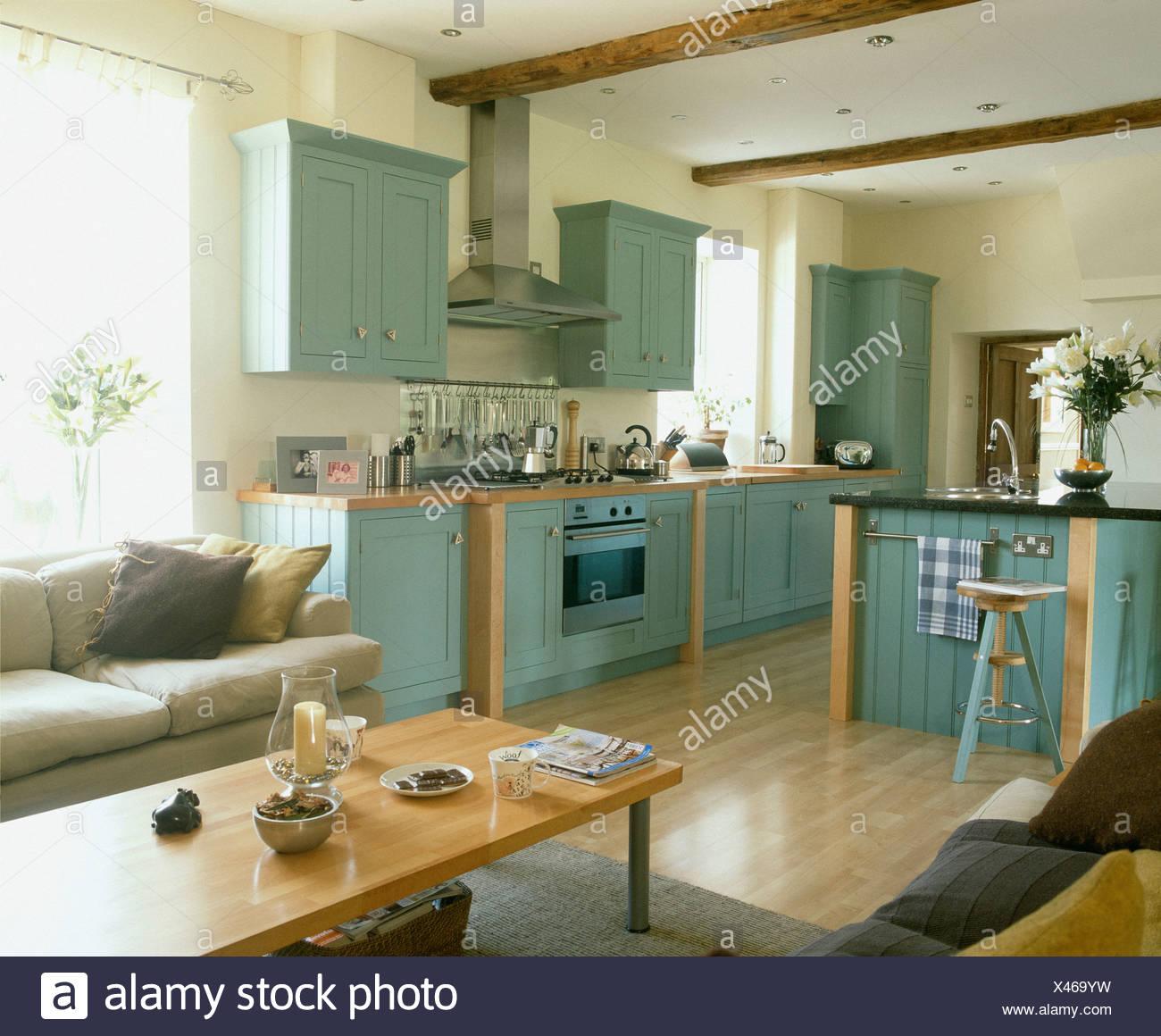 Blu pallido dotati di unità nel paese cucina con legno ...