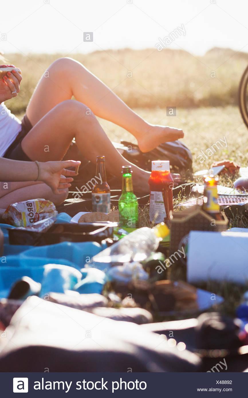 Sezione bassa di donna con cibo e bevande in campo al picnic Immagini Stock