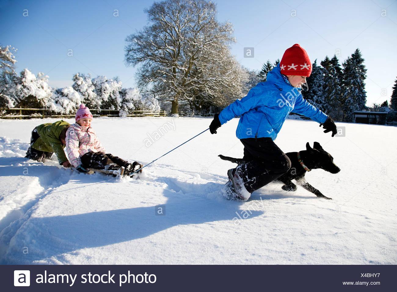 Bambini che giocano sulla slitta nella neve Immagini Stock