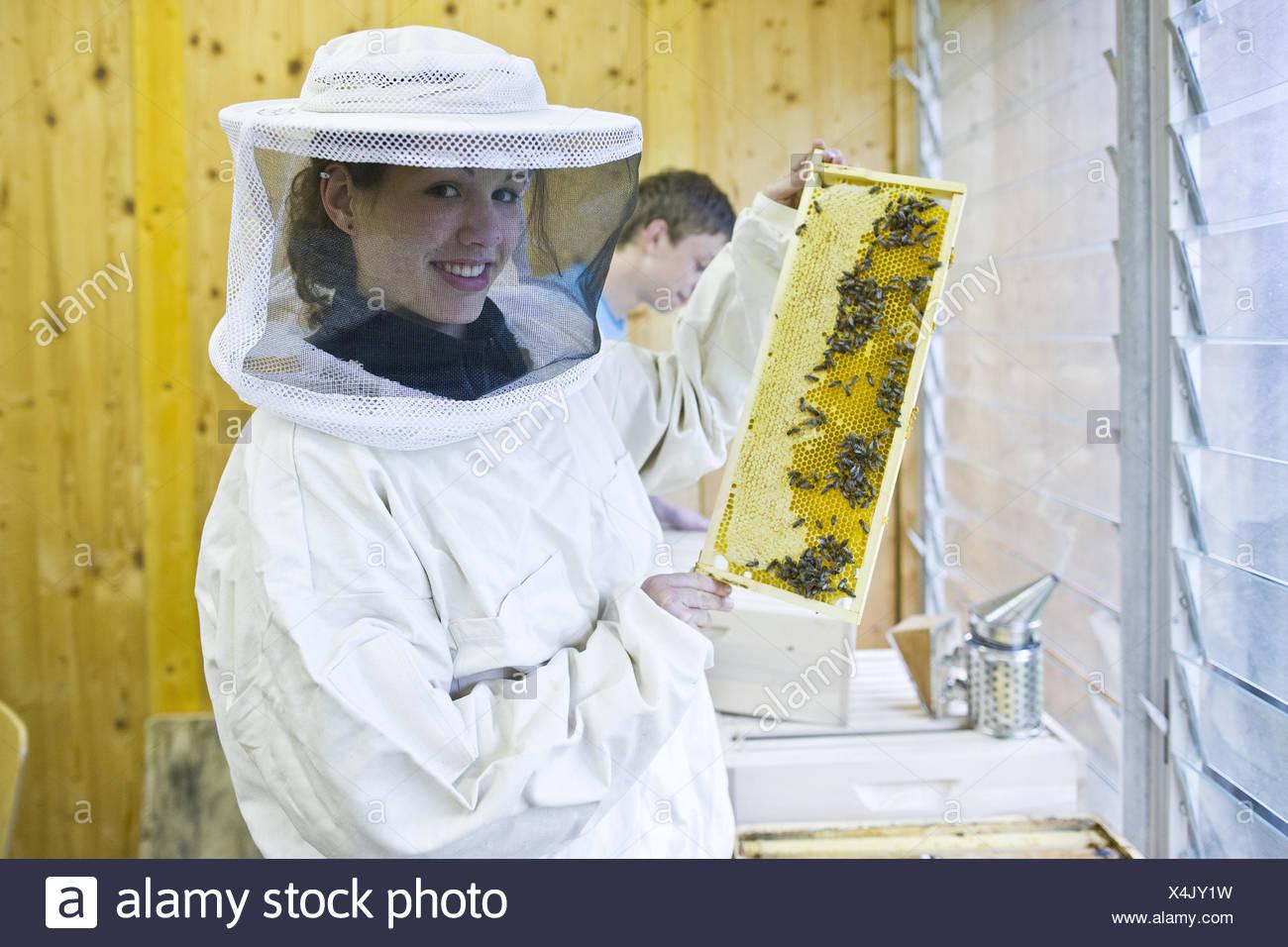Apicoltore, honeycomb, abbigliamento protettivo, Immagini Stock
