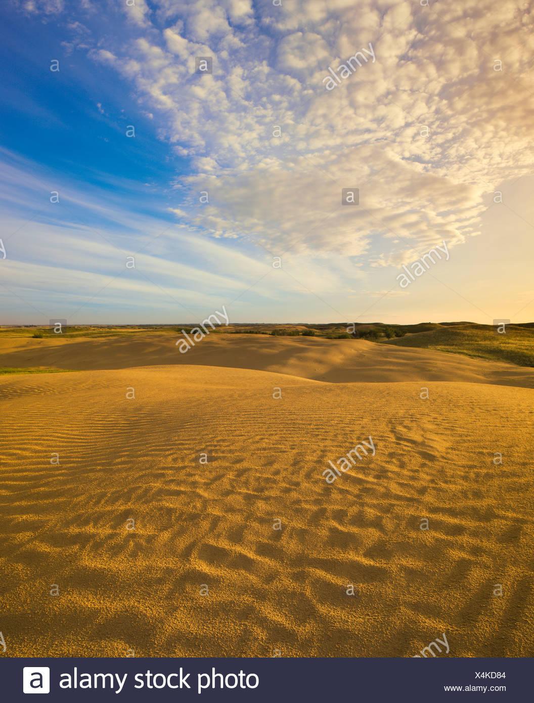 Dettaglio della grande Sandhills vicino a Leader, Saskatchewan, Canada. Immagini Stock
