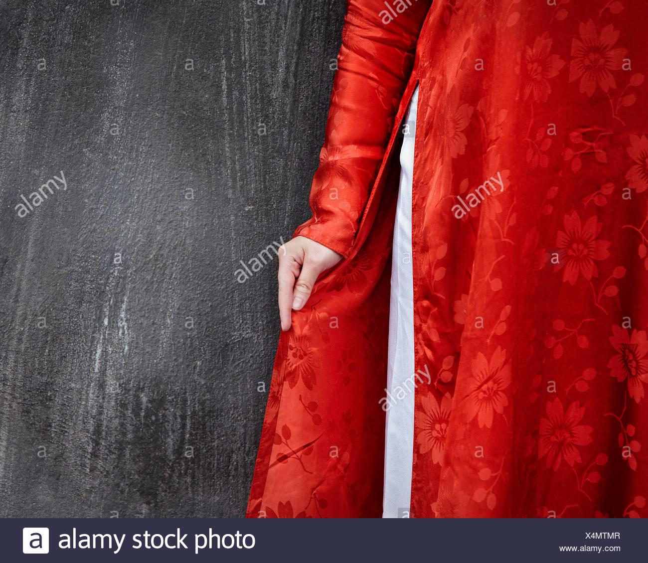 14b0c37fad40 Un dettaglio bella rossa ao dai tradizionale vietnamita di donna in abito  grigio anteriore parete.