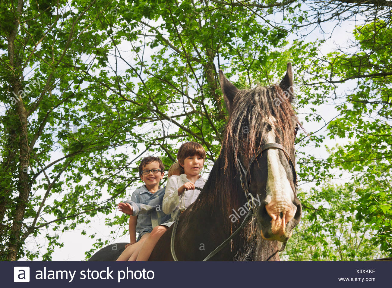 Basso angolo vista di tre ragazzi a cavallo Foto Stock