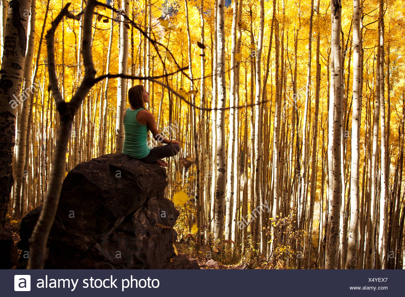 Una giovane donna medita pacificamente su una roccia nel mezzo di un mare di foglie dorate. Immagini Stock