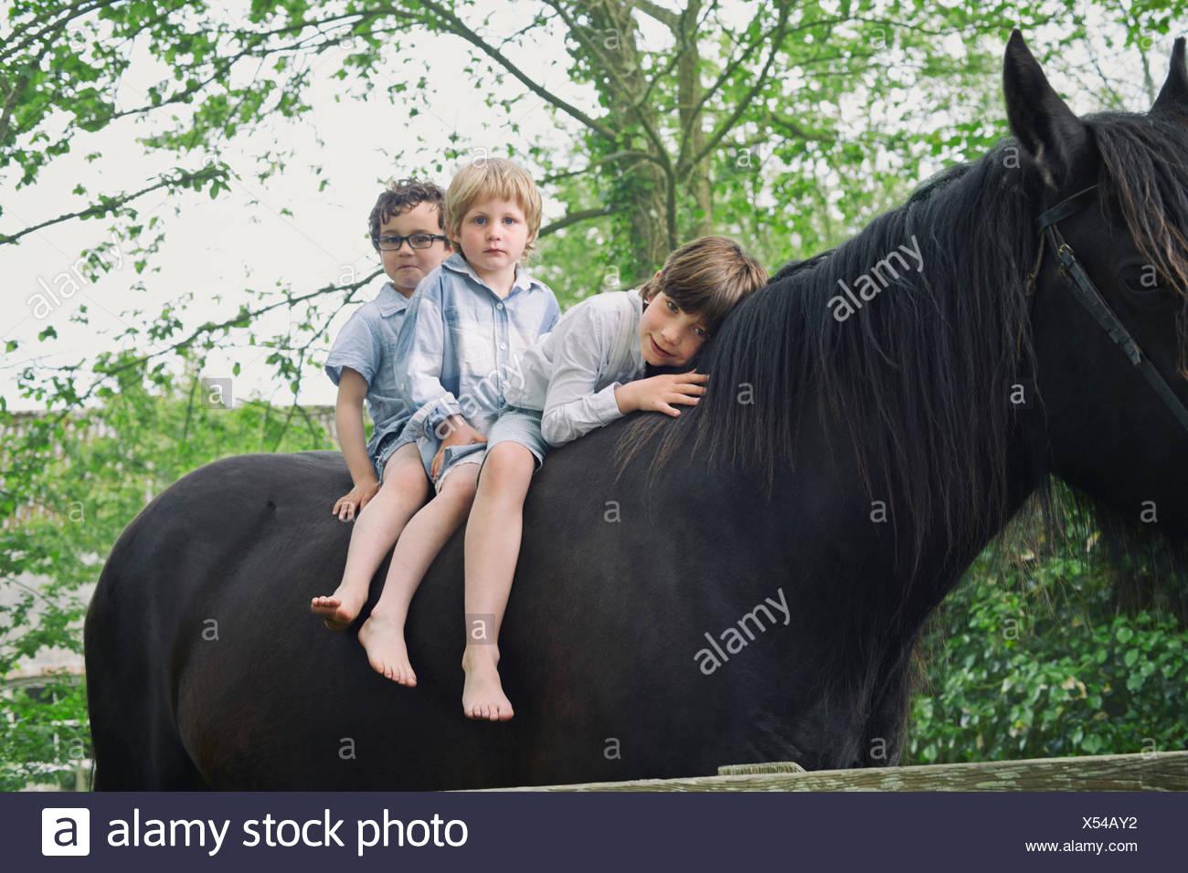 Tre ragazzi in una fila a cavallo nei boschi Immagini Stock