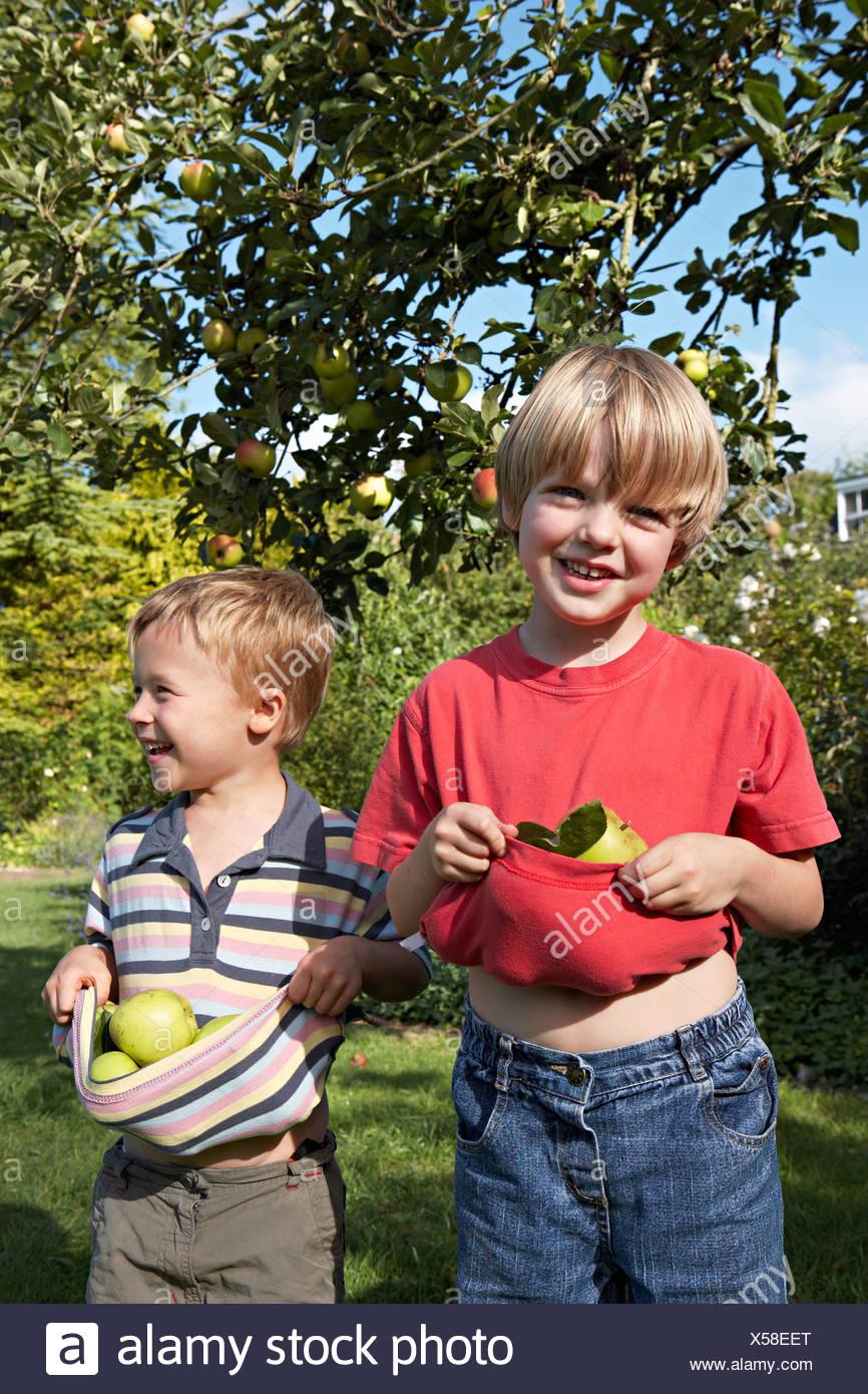 Due ragazzi di 3 6 in piedi sotto il melo in giardino tenendo le mele di t shirt sorridente Immagini Stock