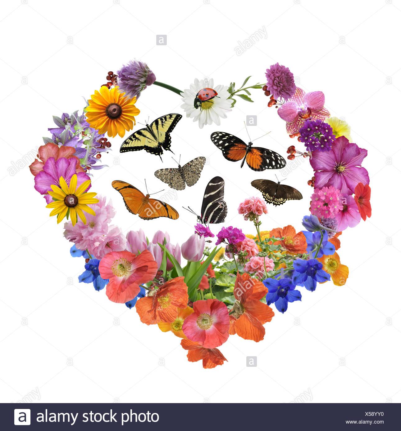 Farfalle e fiori a forma di cuore Immagini Stock