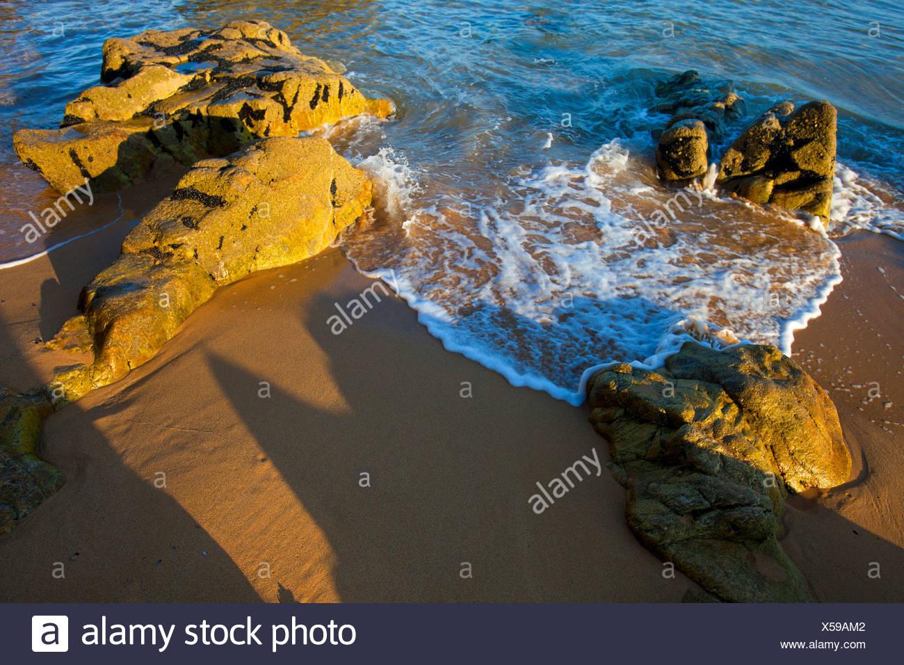 La Côte Sauvage, Francia, Europa, Bretagna, dipartimento Morbihan, costa, rock, Cliff, mare, spiaggia di sabbia Immagini Stock