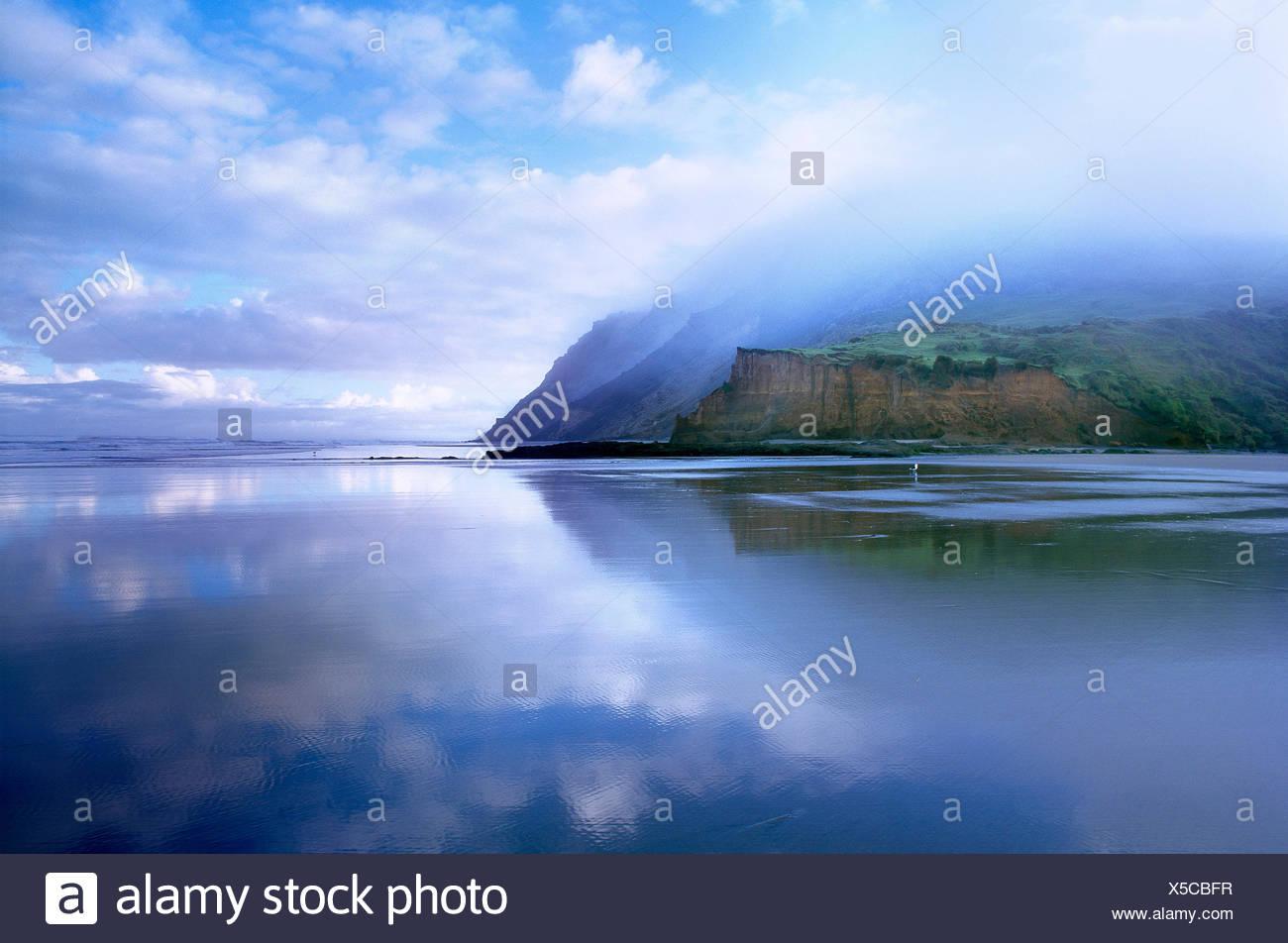 Nuova Zelanda. North Island. basso livello nuvola sulla costa ovest scogliere e spiaggia. Immagini Stock