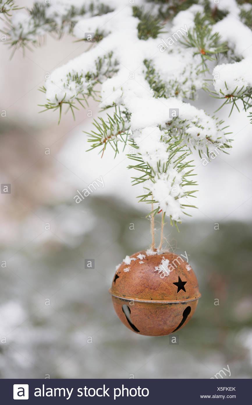 Bell ornamento appesa snowy ramo di albero Immagini Stock