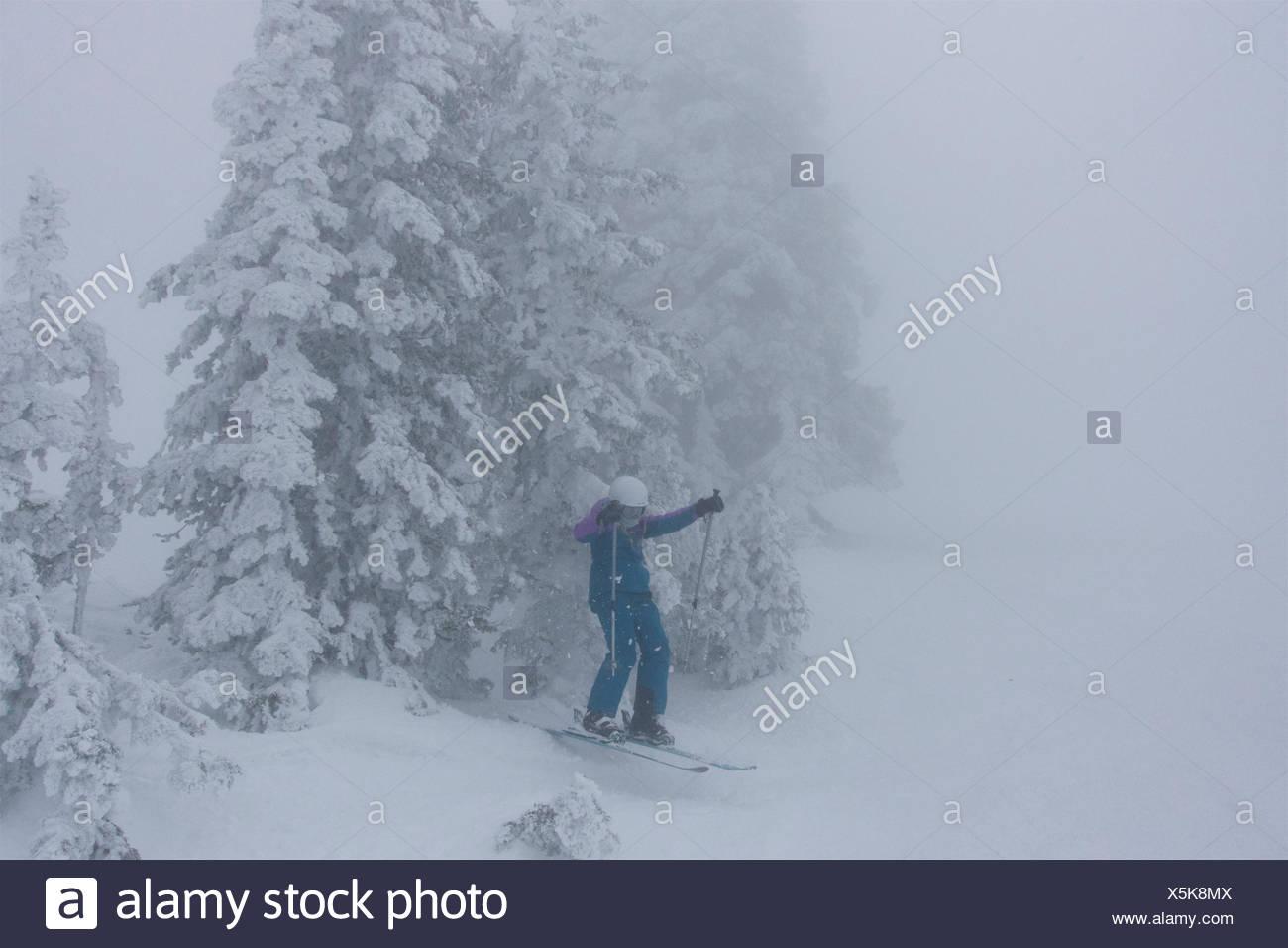 Una ragazza teen sciare nella nebbia, whiteout condizioni salti attraverso le rime coperti di conifere. Immagini Stock