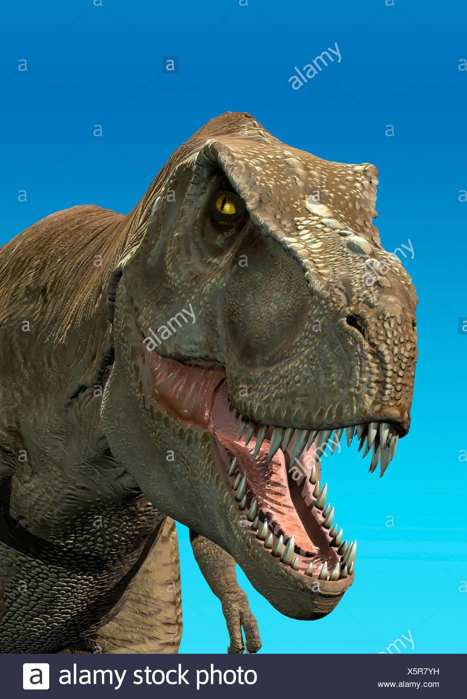 Tyrannosaurus rex dinosauro t rex più grande dinosauro carnivoro Immagini Stock