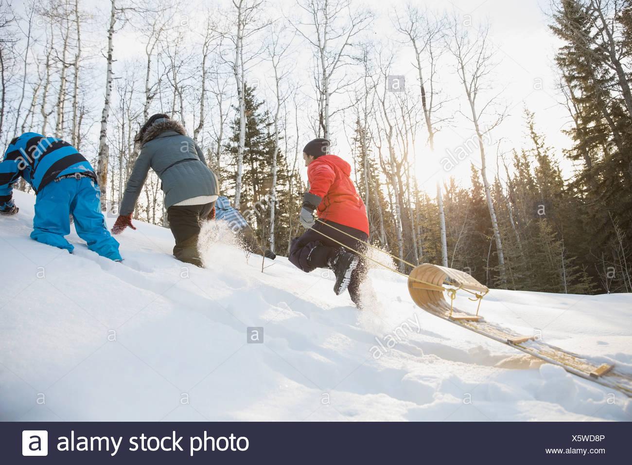 Famiglia a piedi su per la collina tirando lo slittino Immagini Stock