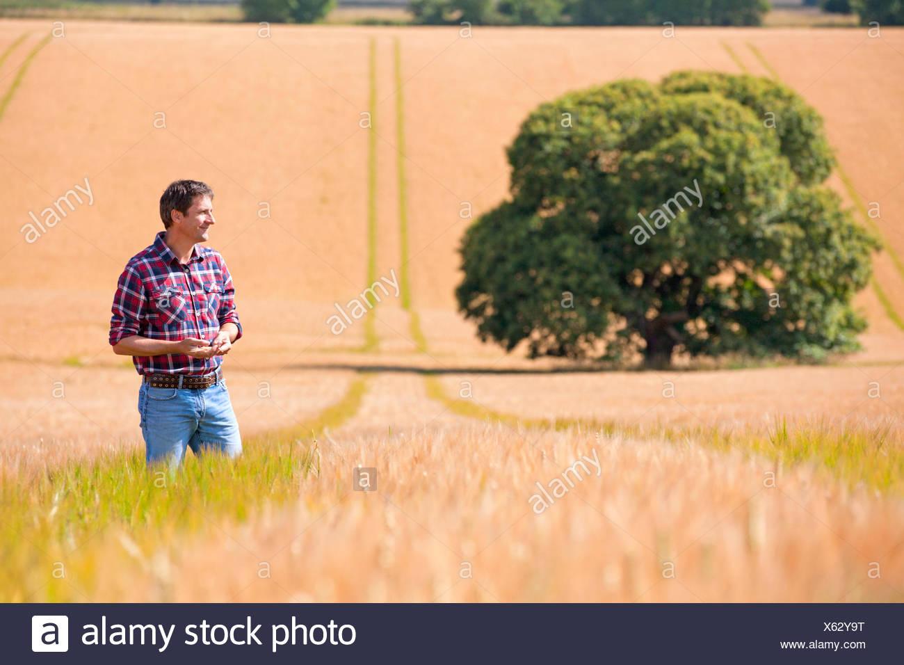 Agricoltore in piedi nella soleggiata orzo rurale campo di raccolto in estate Immagini Stock