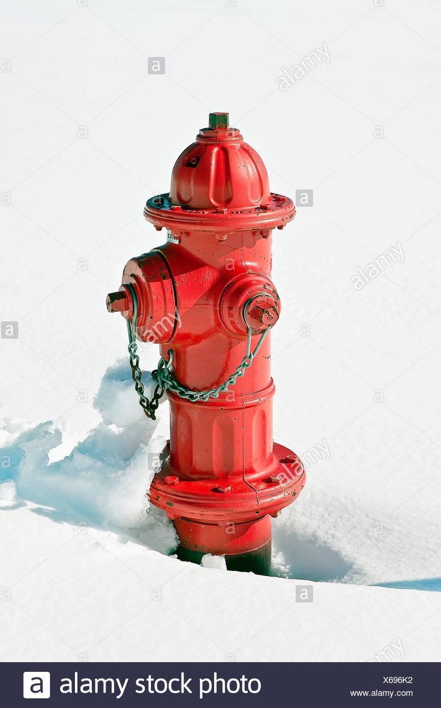 Red idrante di fuoco nella neve. Immagini Stock