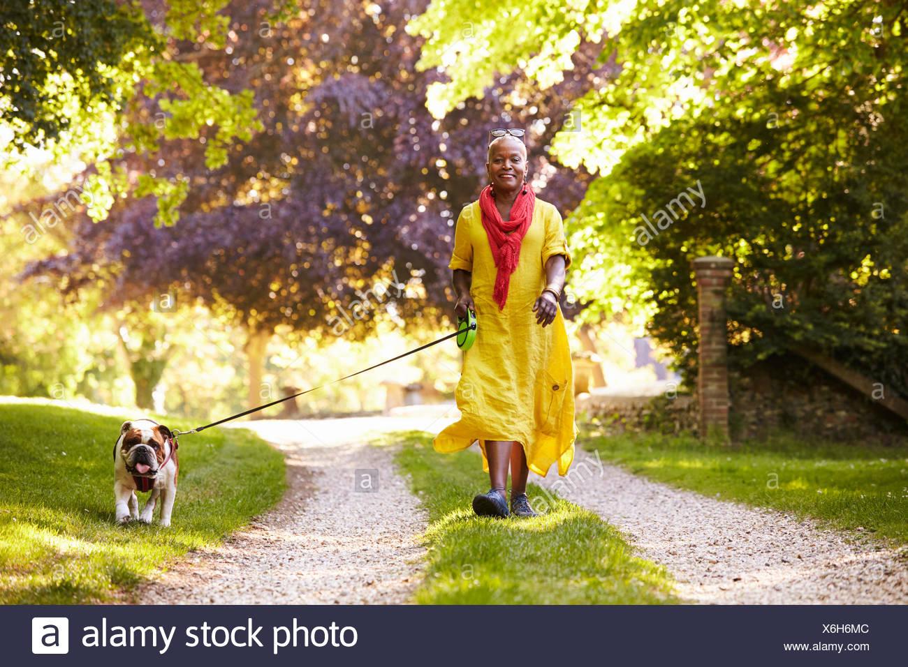 Ritratto di donna senior a piedi bulldog di pet in campagna Immagini Stock