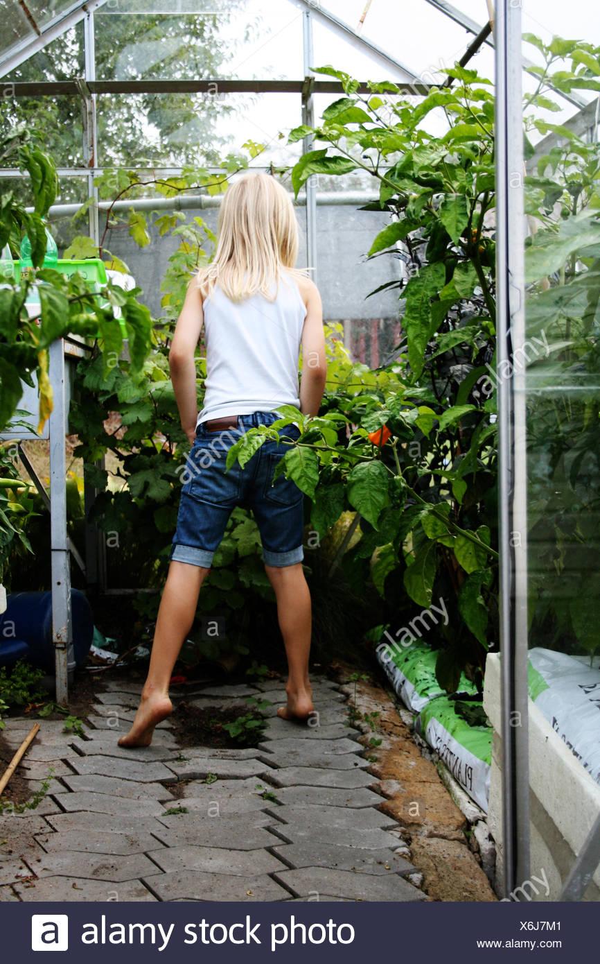 Vista posteriore di un ragazzo con i capelli lunghi in piedi in una serra Immagini Stock