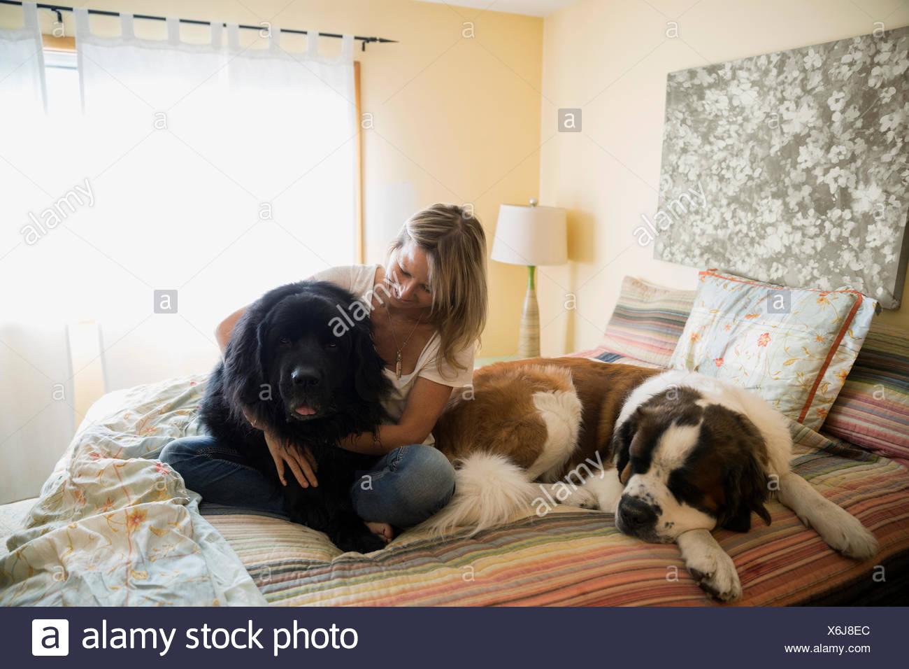 Donna coccole i cani di grande taglia nel letto Immagini Stock