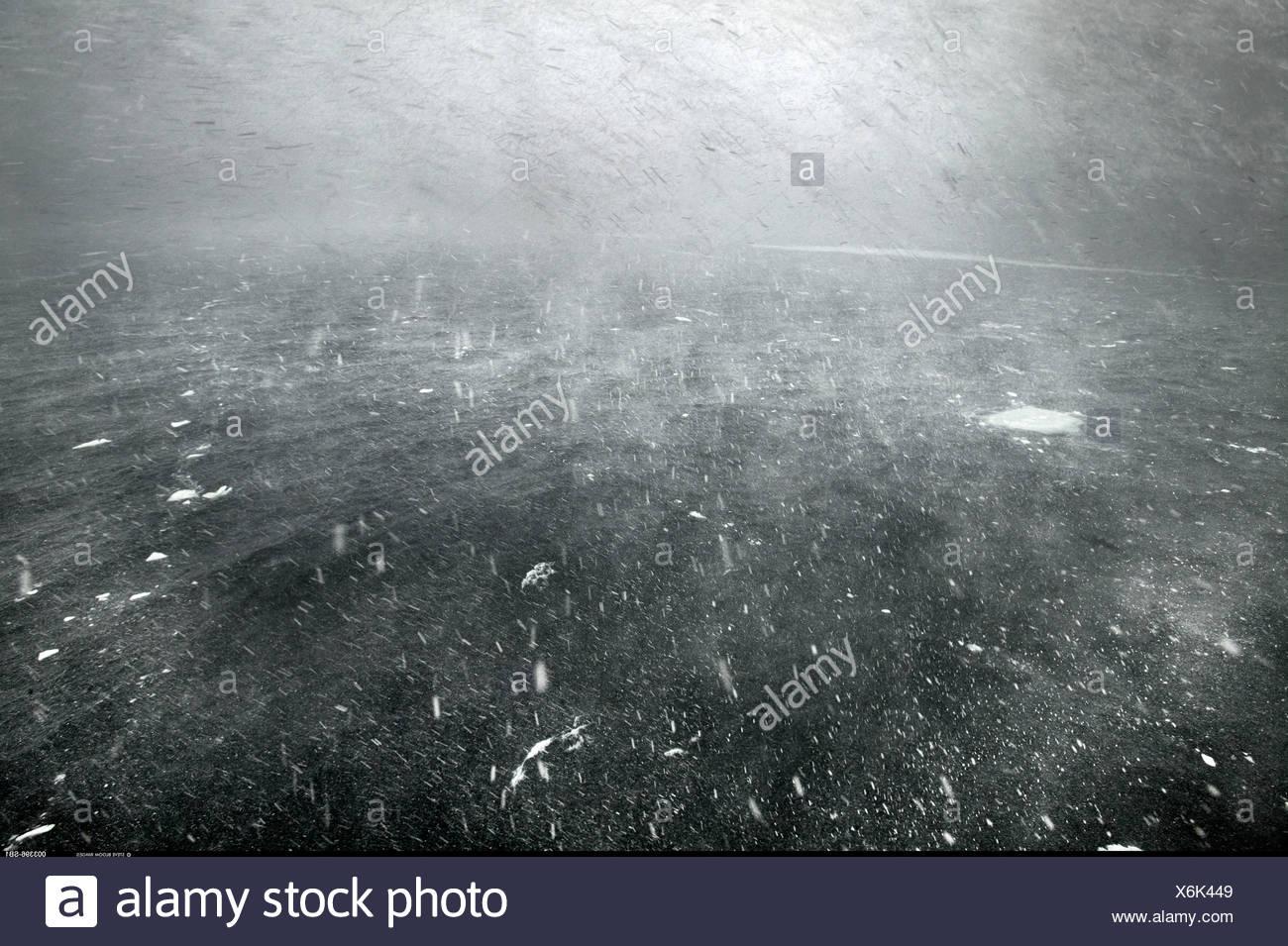 Blizzard in mare in Antartide Immagini Stock