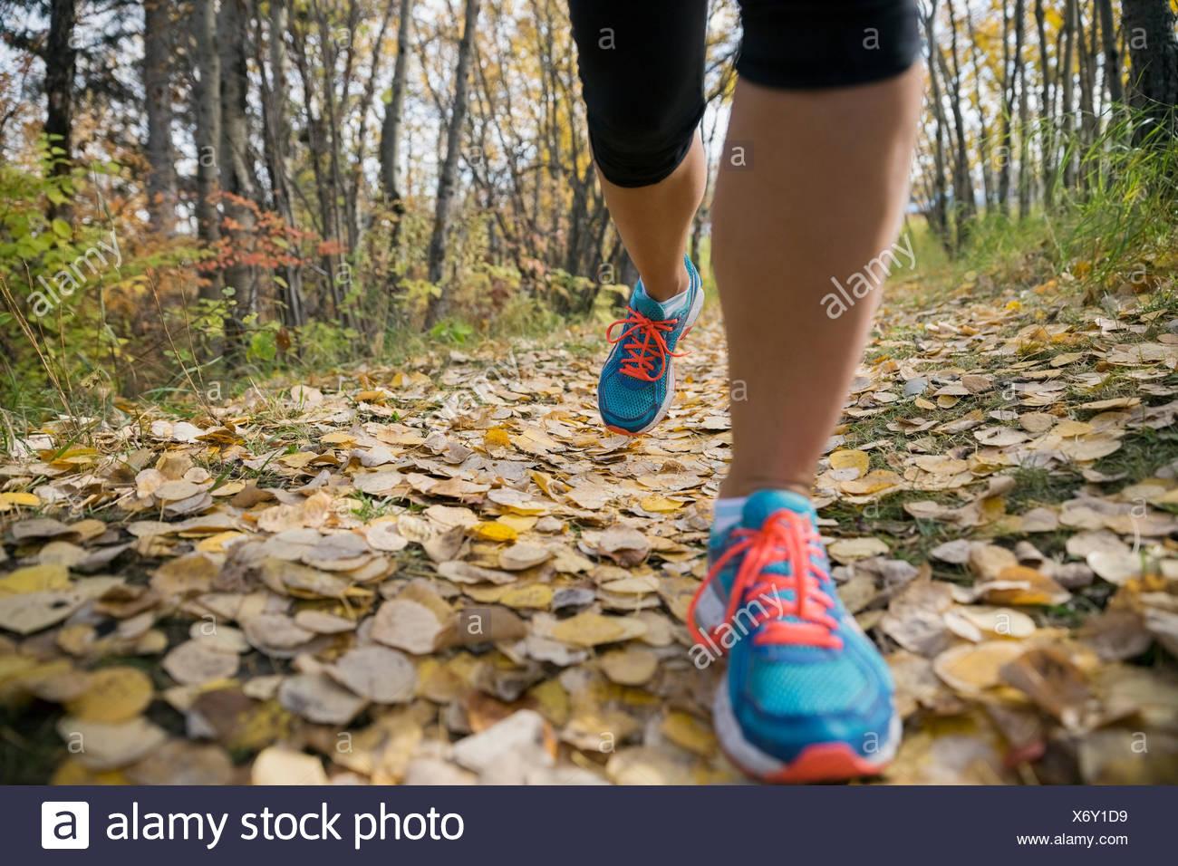 Close up donna di piedi di jogging sul percorso di autunno Immagini Stock