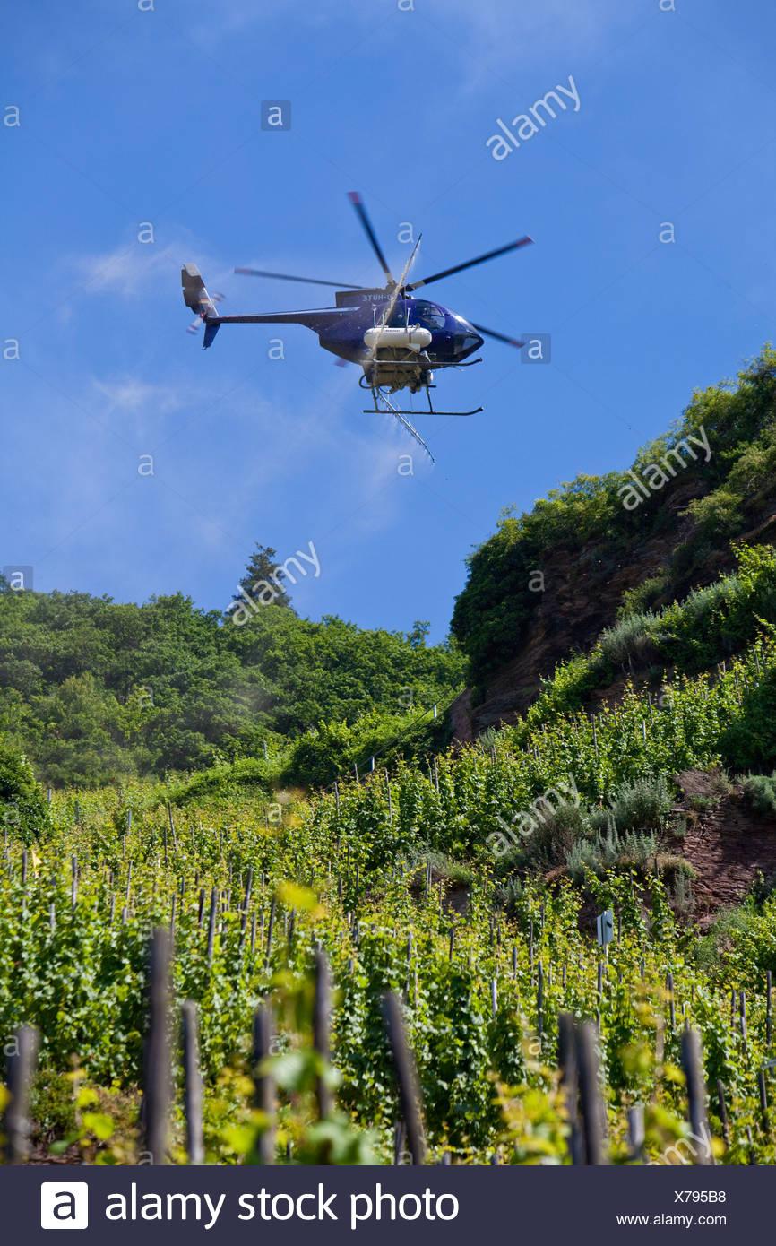 Un Elicottero : Un elicottero di vino di spruzzatura lungo il fiume moselle con un