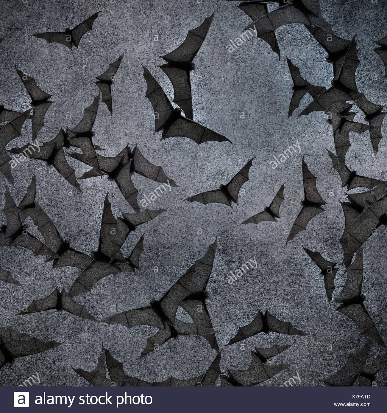 I pipistrelli nel cielo nuvoloso scuro, perfetto sfondo per Halloween Immagini Stock