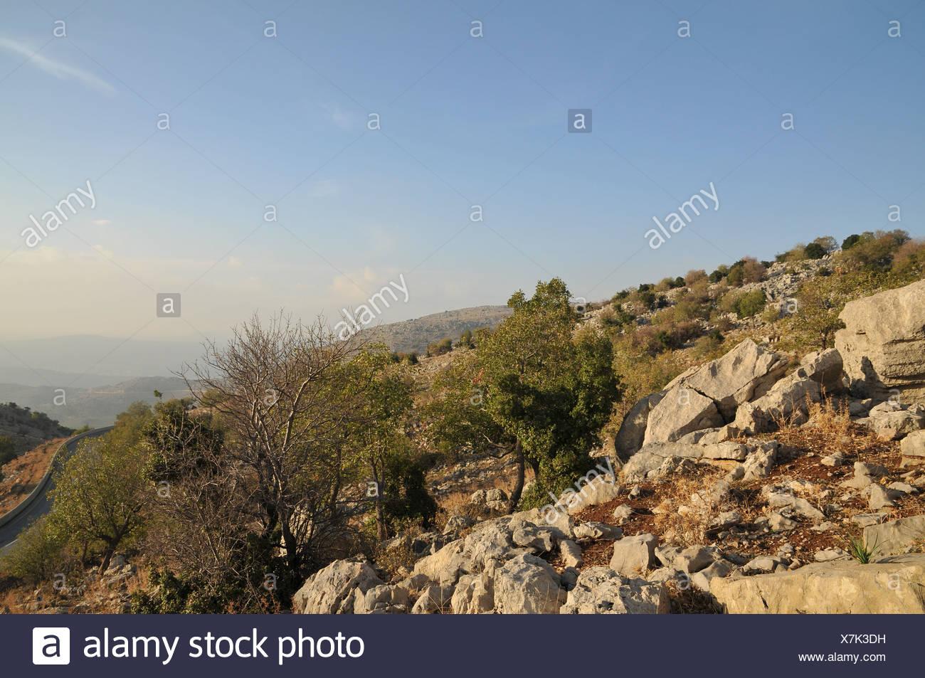 Israele, Golan Immagini Stock