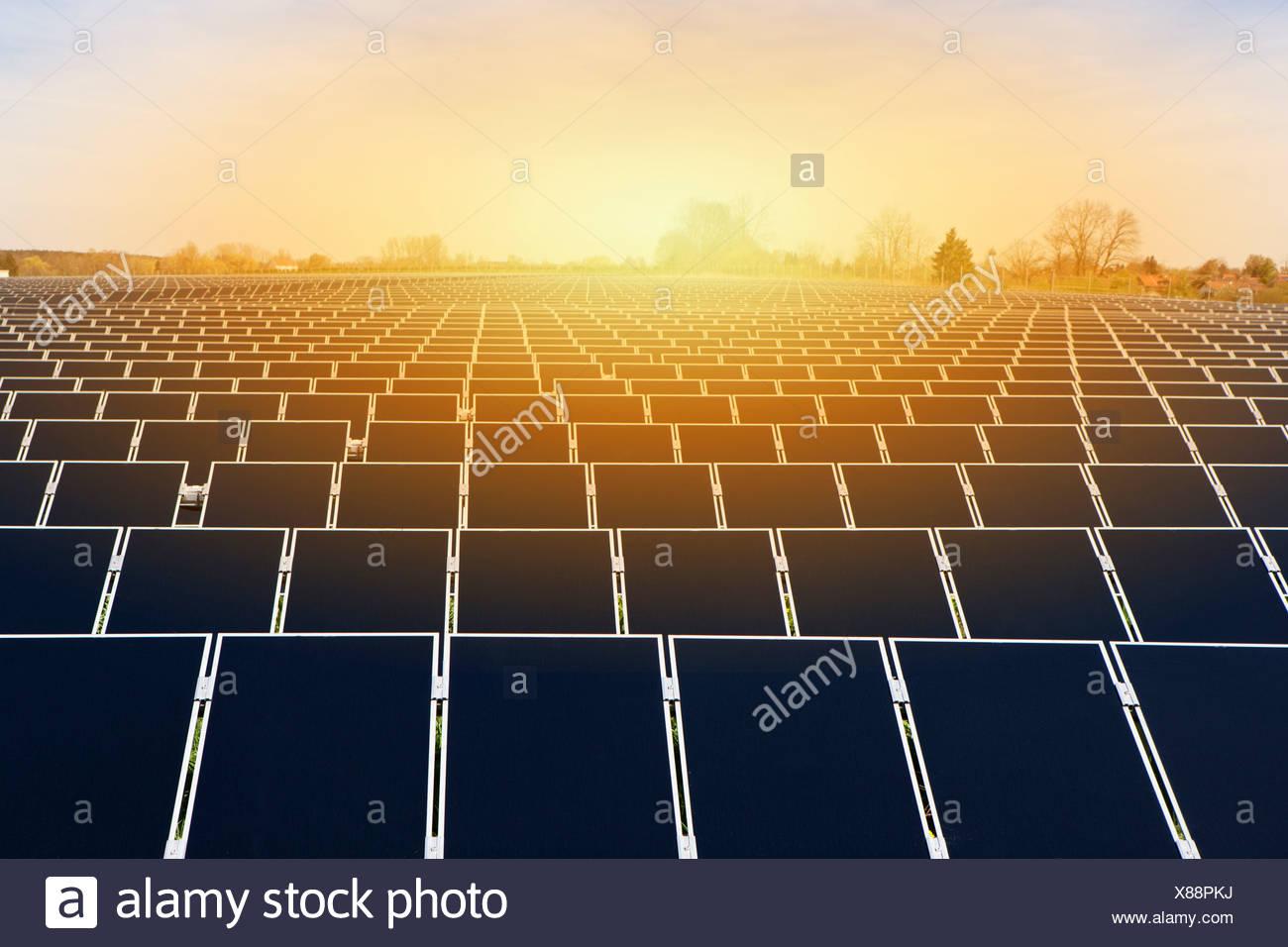 Grande energia solare impianto Immagini Stock