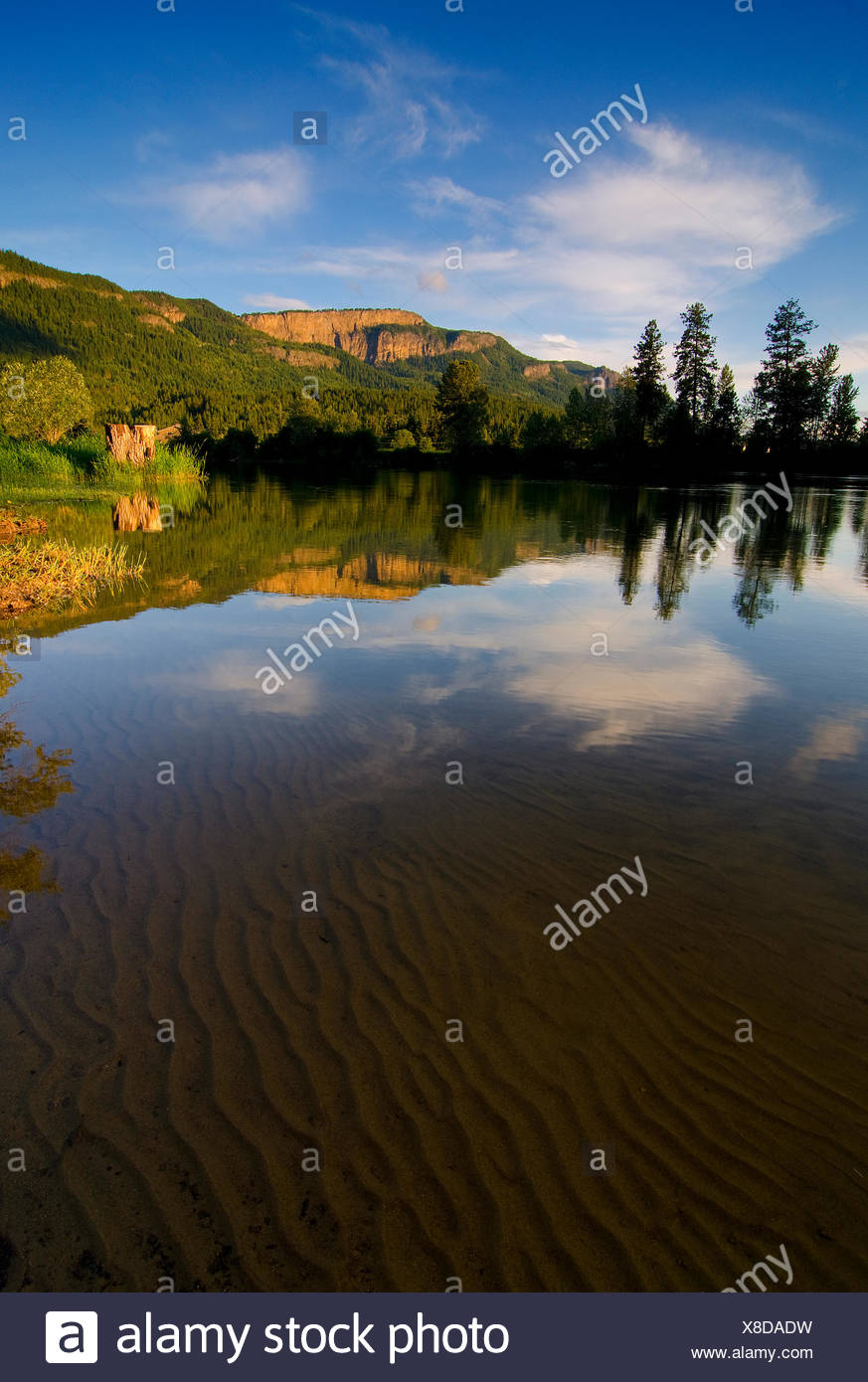 L'acqua chiara rivela gli intricati schemi di sabbia sotto il fiume shuswap mentre il enderby scogliere crogiolarsi al sole del pomeriggio in enderby nella regione di shuswap della British Columbia, Canada Immagini Stock