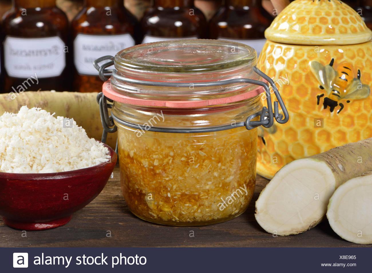 La produzione di sciroppo di rafano con miele / (Cochlearia armoracia) Immagini Stock