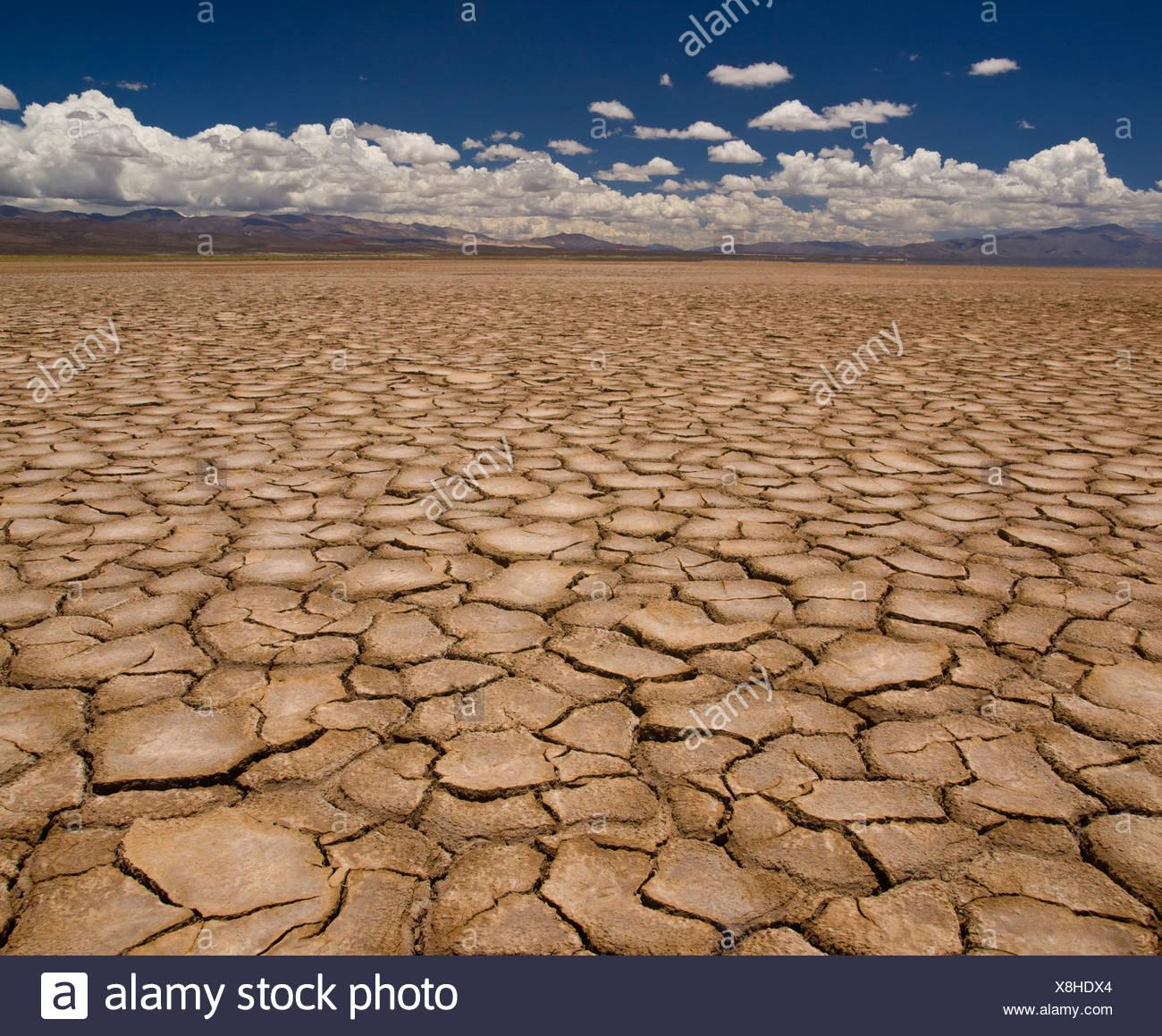 Ampio campo di terra cotta dopo un lungo periodo di siccità. Immagini Stock