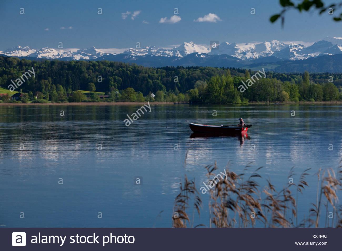 La Svizzera, Europa, lago, nave, barca, navi, barche, Alpi, Canton, ZH, Zurigo, molla, Greifensee, Lago di Greifen, barca Immagini Stock