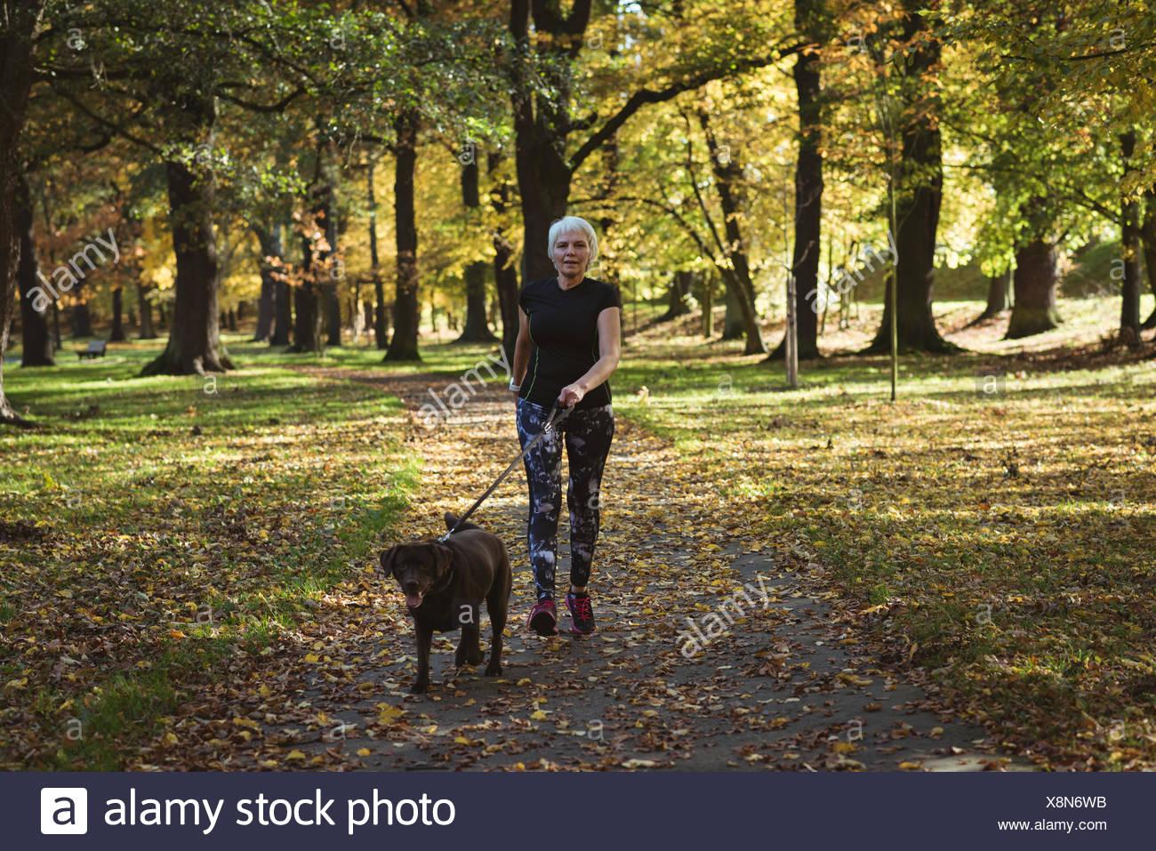 Senior donna passeggiate nel parco con il suo cane Immagini Stock