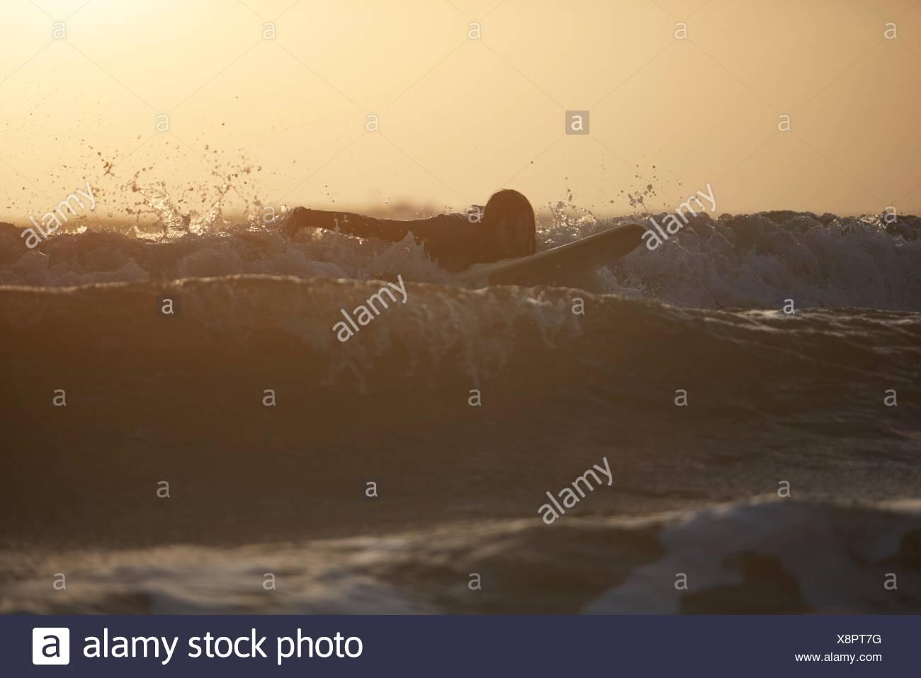 Silhouette di un giovane maschio surfer surf in mare, Devon, Inghilterra, Regno Unito Immagini Stock
