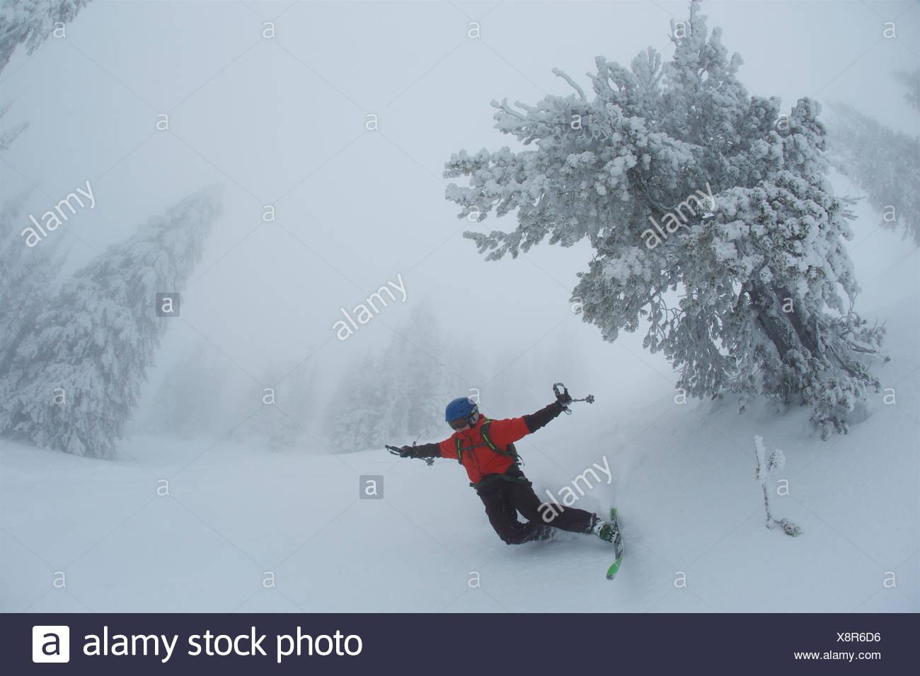 Un adolescente ragazzo cade durante la pratica dello sci nella nebbia, whiteout condizioni nei pressi di rime coperti di conifere. Immagini Stock