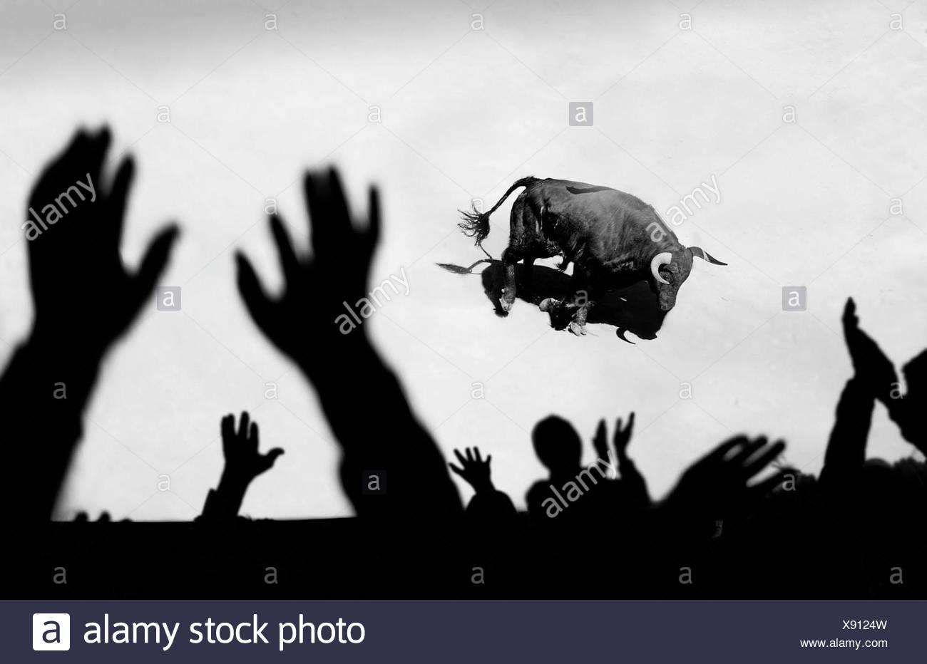 Spagna, la folla di persone che guardano bull Immagini Stock