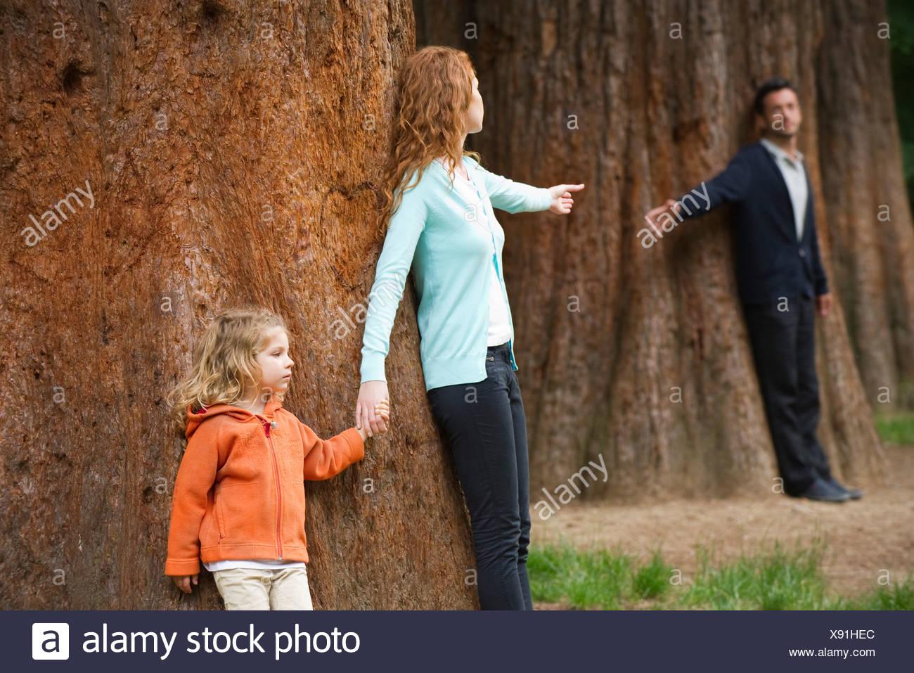 I genitori appoggiata contro gli alberi separati, raggiungendo gli uni agli altri Foto Stock