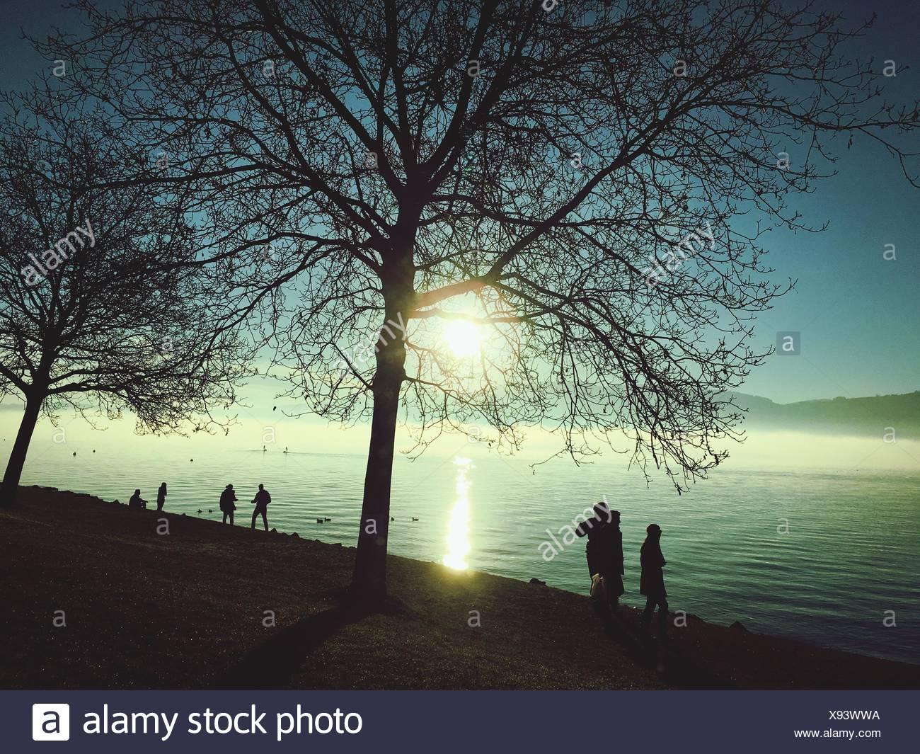 Silhouette di persone in piedi sul lungolago a Uerikon durante il tramonto Immagini Stock